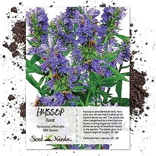 Best hyssopus officinalis seeds Reviews