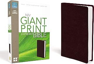 giant print compact bible