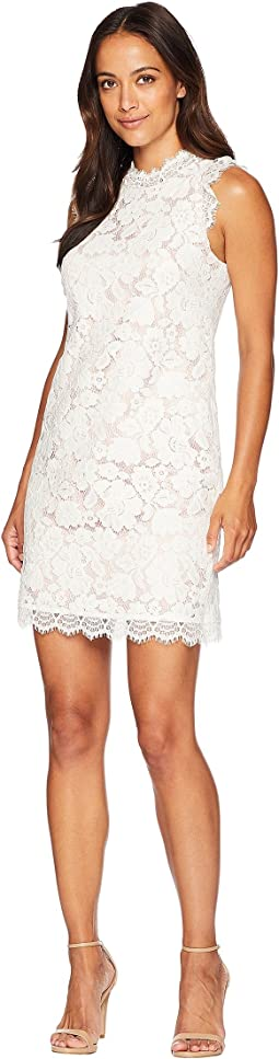 Lace Shift Dress with Eyelash Lace at Neckline and Arm