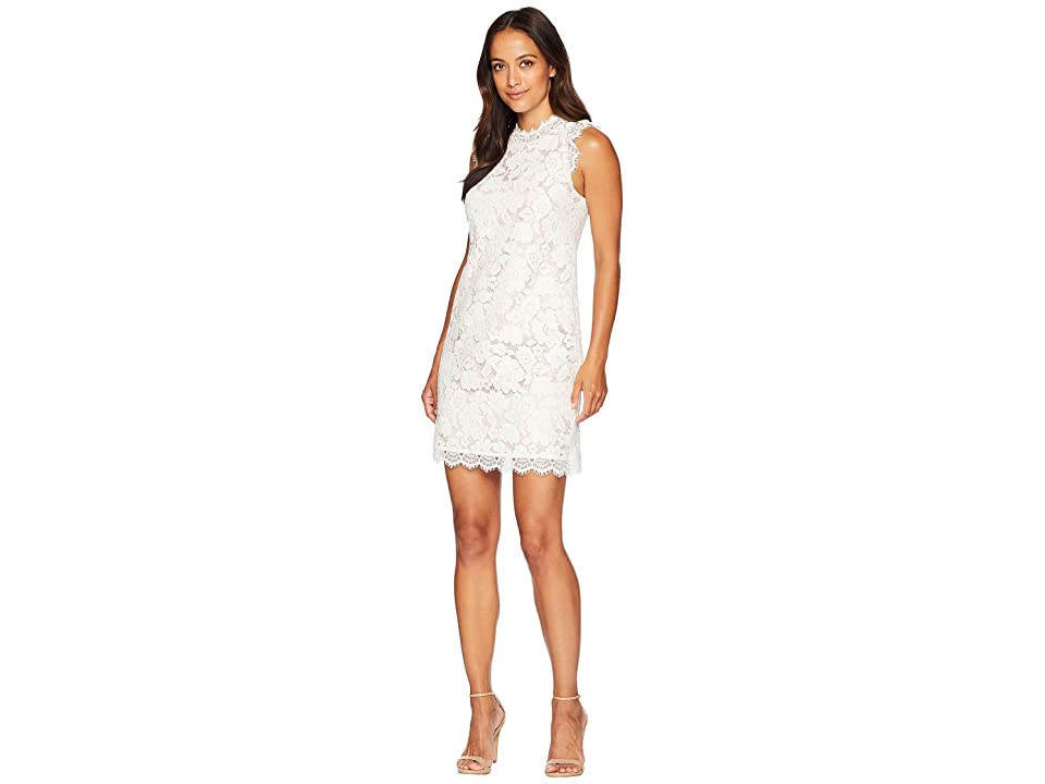 Vince Camuto Lace Shift Dress with Eyelash Lace at Neckline and Arm (Cream) Women