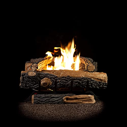 Gas Log Fireplace Insert Amazoncom