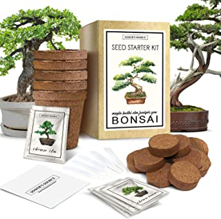 Bonsai Tree Starter Kit | Indoor and Outdoor Beginner Seed Kit, Soil Mix, Biodegradable Planter Pots, Plant Markers, Growing Guide | Grows 5 Unique Trees