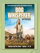 Dog Whisperer - Favorites Season One, Vol.1