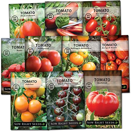Sow Right Seeds - Tomato Seed Collection for Planting - Variety of Sizes, Shapes, and Colors - Non-GMO Heirloom Packets with Instructions for Growing a Home Vegetable Garden - Great Gardening Gift