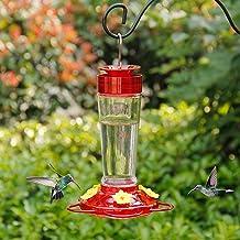 Shrdaepe Hummingbird Feeder, Glass Bottle Bird Feeders, 5 Feeding Ports, 10-Ounce Nectar Capacity