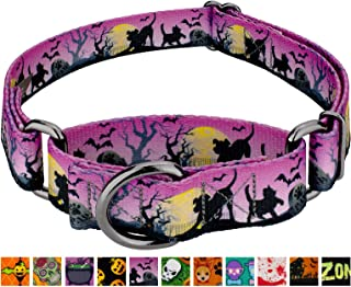 Country Brook Design - Martingale Dog Collar - Halloween Collection with 10 Spooky Designs
