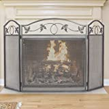 Top 10 Best Fireplace Screens of 2020
