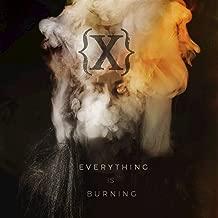 Everything Is Burning (Metanoia Addendum)