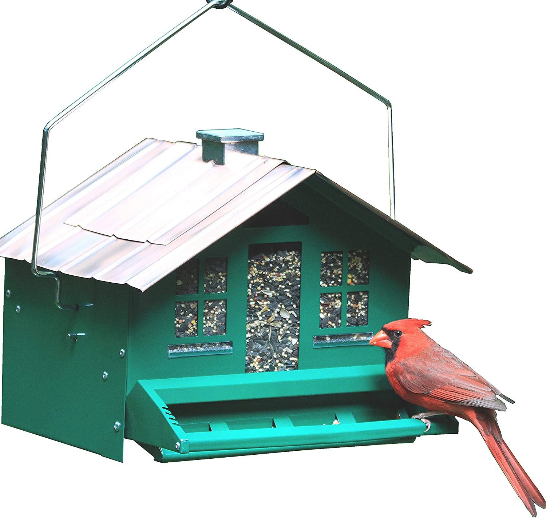 Perky-Pet 8lb Squirrel-Be-Gone II Feeder Home with Chimney : Wild Bird Feeder Accessories : Patio, Lawn & Garden