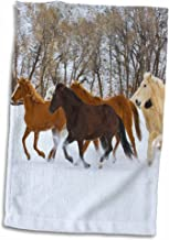 3D Rose USA-Wyoming-Shell-Horses Running in Snow-Us51 Teg0015-Terry Eggers Towel, 15 x 22