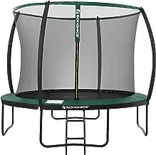 SONGMICS tuintrampoline, 10 ft ronde trampoline met veiligheidsnet, ladder, gewatteerde boogstokken, TÜV Rheinland veiligh...