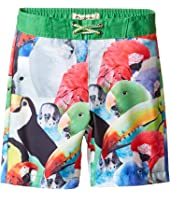 Appaman Kids - Parrot Pattern Swim Trunks (Toddler/Little Kids/Big Kids)