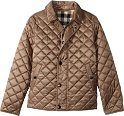 Burberry Kids - Luke Quilted Jacket (Little Kids/Big Kids)