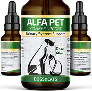 Alfa Pet UTI Treatment for Cats and Dogs - Kidney Remedy with Cranberry - Kidney Bladder Urinary Support - Relief Frequent...