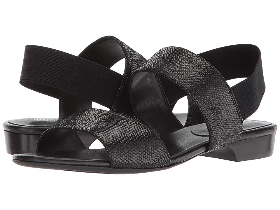 Vaneli Braidy (Black) Women