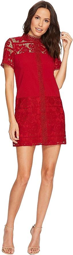 kensie - Striped Floral Lace Dress KSDK8113