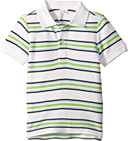 Green/Navy Stripe