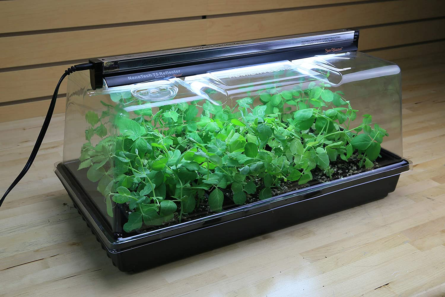Black//Clear 7 Dome /& T5 Light 5 Piece Super Sprouter Premium Propagation Kit with Heat Mat 10 x 20 Tray