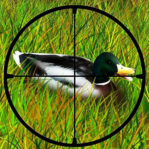 Duck Hunting : la caza después de la temporada de venado en el gran parque forestal - edición gratuita
