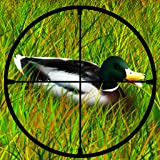 Duck Hunting : The after Deer season Hunt in Grand Park Forest - Free Edition