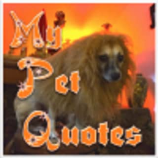 My Pet Quotes