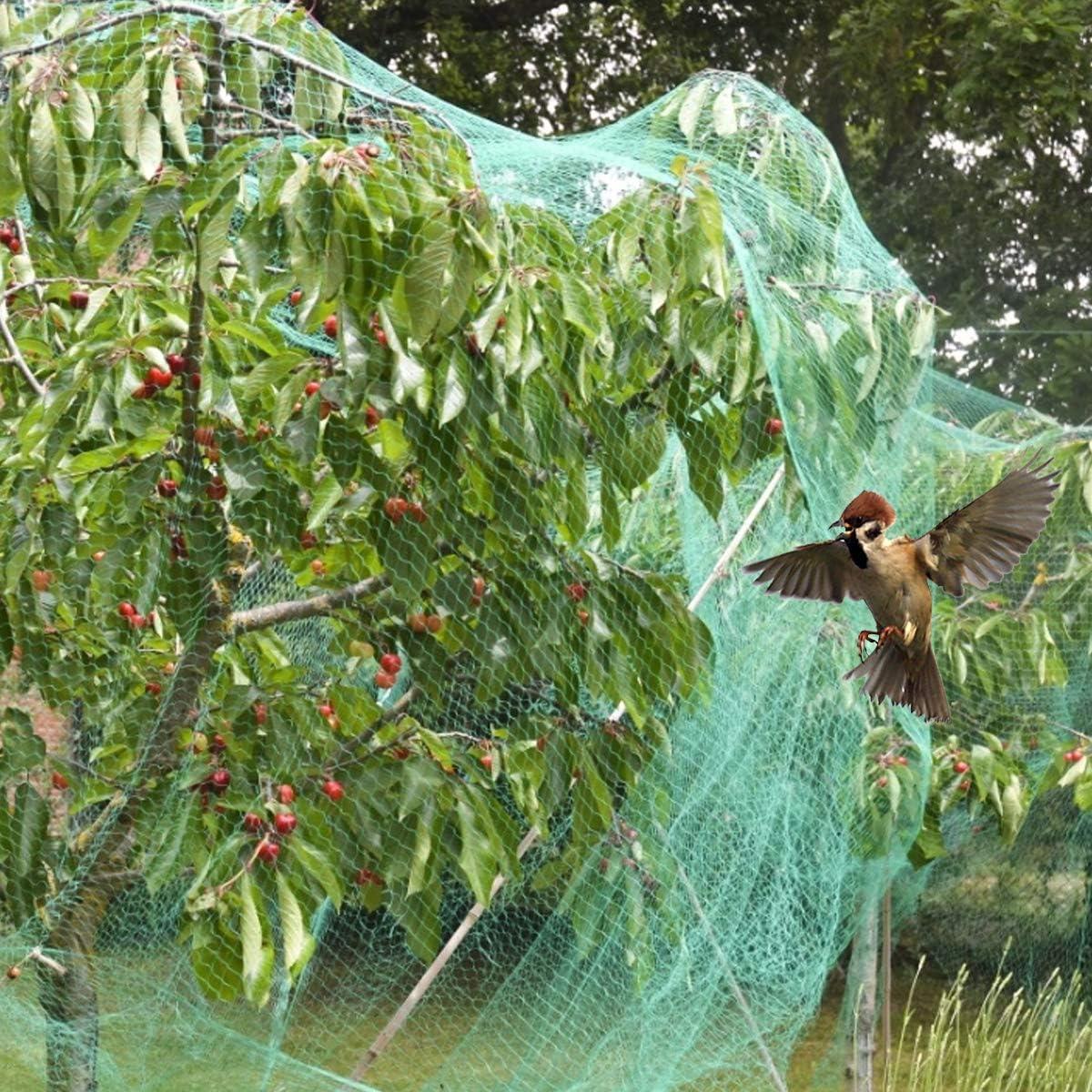 HellDoler Rete Protezione Uccelli,4 m x 12 m Rete per Uccelli Rete Anti-Uccelli Verde Rete Protezione per Piante stagni Frutti Larghezza Maglie