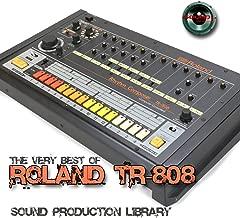 for ROLAND TR-808 - Large Original 24bit WAVE Studio Samples/Loops Studio Library on DVD or download