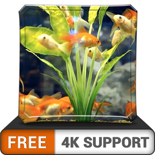 free happy aquarium HD - dekorieren Sie Ihr Zimmer mit einem wunderschönen Meerwasseraquarium auf Ihrem HDR 4K-Fernseher, 8K-Fernseher und Feuergeräten als Hintergrundbild, Dekoration für die Weihnach