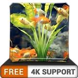 Happy Aquarium HD gratis: decora tu habitación con un hermoso acuario de vida marina en tu televisor HDR 4K, TV 8K y dispositivos de fuego como fondo de pantalla, decoración para las vacaciones de Nav