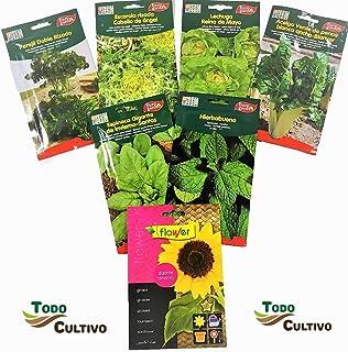 Amazon.es: semillas lechuga
