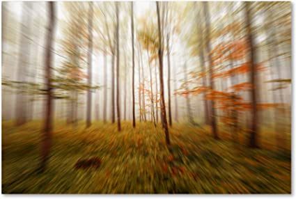 Amazon Com Autumn Go Fast By Philippe Sainte Laudy Hanging Art Piece 22 X32 Canvas Wall Art Posters Prints
