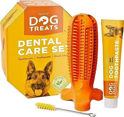 Spazzolino de denti e dentifricio set per cani, pulizia dentale 100%  taglia grande natural dog treats 44047420