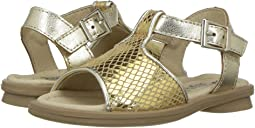 Sugar Sandal (Toddler/Little Kid)