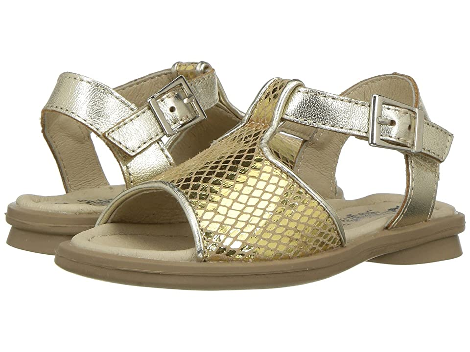 Old Soles Sugar Sandal (Toddler/Little Kid) (Gold Snake) Girls Shoes