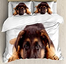 Lunarable German Shepherd Duvet Cover Set, Puppy Hound Photograph Purebred Canine with Innocent Expression, Decorative 3 Piece Bedding Set with 2 Pillow Shams, Queen Size, Brown and Dark Brown