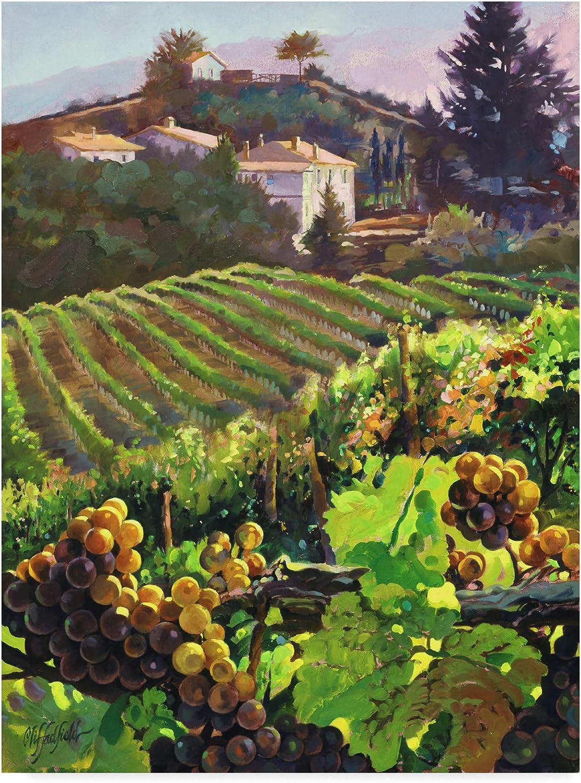 Trademark Fine Art Siena Harvest by Clif Hadfield Wall Decor, 14x19(WAG03091C1419GG)