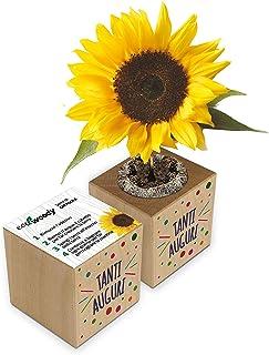 Eco-Woody | Regalo ecologico e sostenibile Tanti auguri | Cubo di legno magnetico con semi di Girasole | Kit per la coltiv...