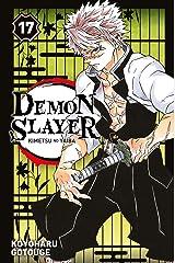 Demon Slayer T17 Format Kindle