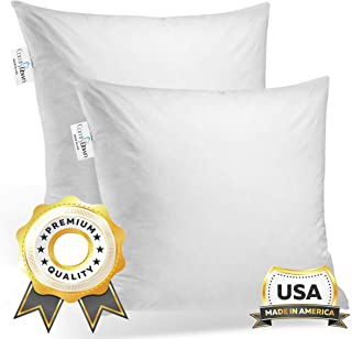 ComfyDown Set of Two, 95% Feather 5% Down, 18 X 18 Square Decorative Pillow Insert, Sham Stuffer - Made in USA