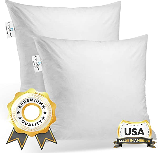 ComfyDown Set Of Two 95 Feather 5 Down 24 X 24 Square Decorative Pillow Insert Sham Stuffer Made In USA