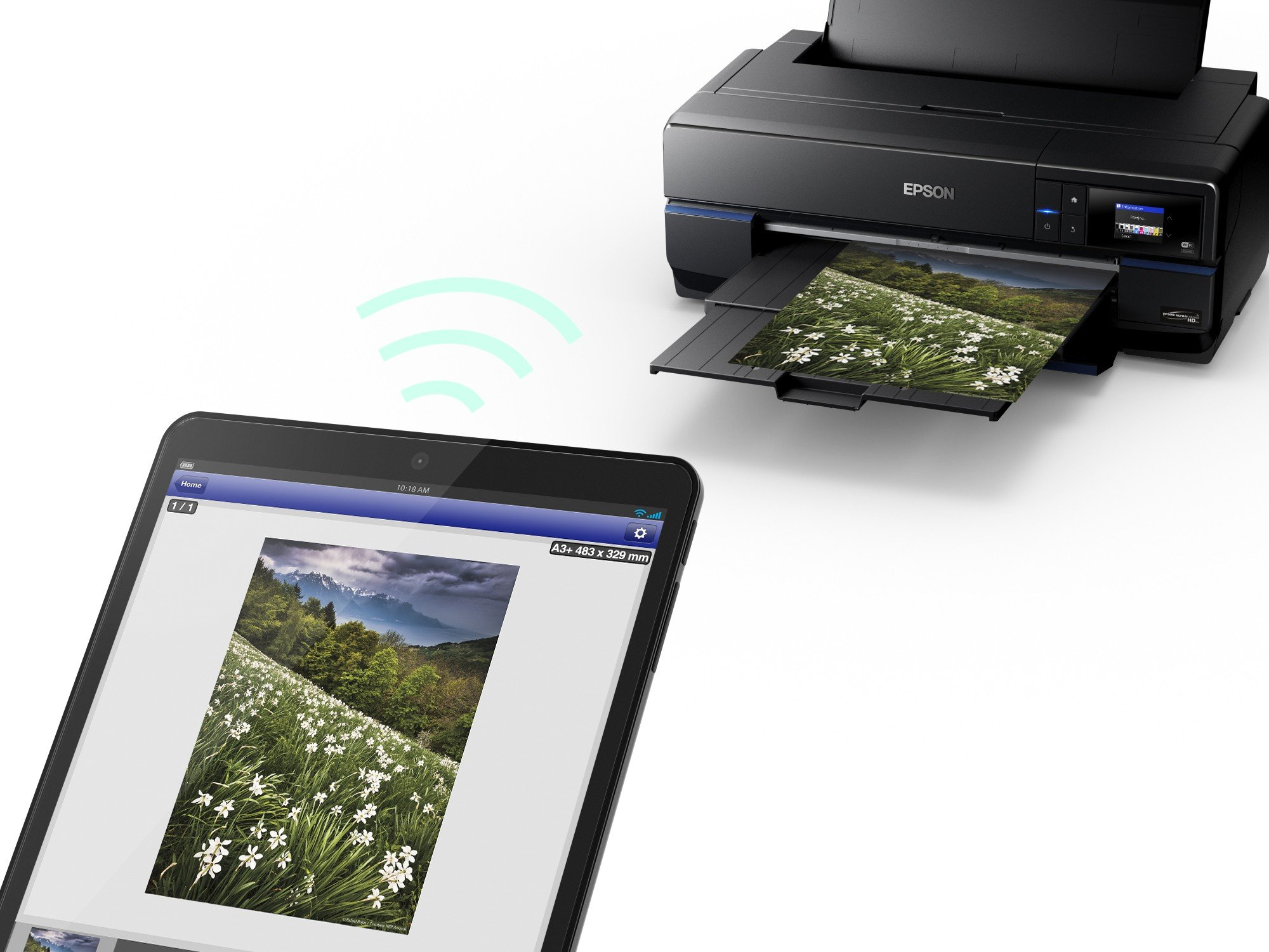 Epson SC-P800 - Impresora de Tinta (2880 x 1440 dpi, 220-240 V, 50 ...