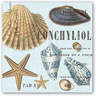 Michel Design Works 20-Count 3-Ply Paper Luncheon Napkins, Seashells