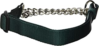 Hamilton 1 by 20 to 32-Inch Adjustable Combo Choke Dog Collar, Large, Chain and Dark Green Nylon