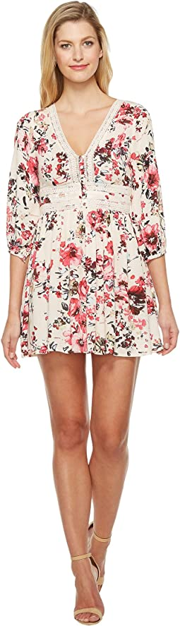Brigitte Bailey - Tasia Button Up Dress with Lace Inset