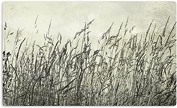 "KESS InHouse Iris Lehnhardt ""Summer Grasses"" Neutral Gray Artistic Aluminum Magnet, 2"" by 3"", Multicolor"