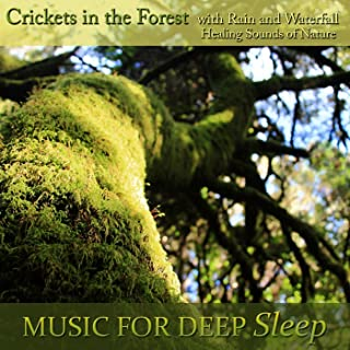 Healing Sounds of Nature: Forest Crickets, Rains and Waterfalls