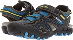 Geox Kids - Kyle 12 (Little Kid/Big Kid)