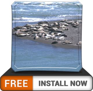 Beauty Beach Life HD - Wallpaper & Themes