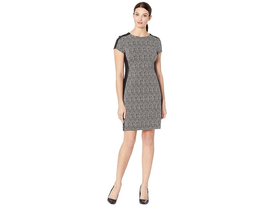 Karen Kane Euro Knit Dress (Black/White) Women