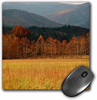 """3dRose USA, Tennessee. Cades Cove in Smoky Mountain National Park. Mouse Pad, 8"""" x 8"""" (mp_189443_1)"""